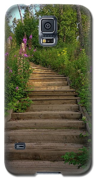 Galaxy S5 Case featuring the photograph A Promising Path by Heidi Hermes