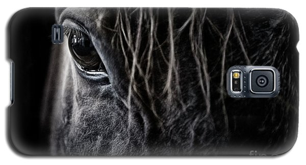 A Race Horse Named Tikki Galaxy S5 Case