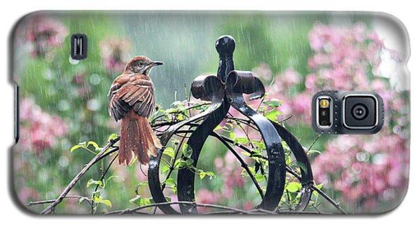 A Rainy Summer Day Galaxy S5 Case