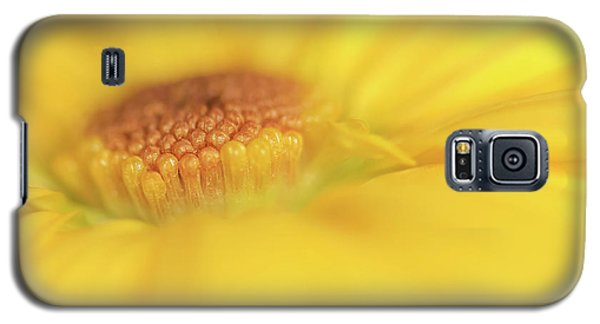 Galaxy S5 Case featuring the photograph A Ray Of Sunshine by Roy McPeak