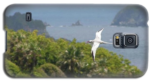 A Red-billed Tropicbird (phaethon Galaxy S5 Case by John Edwards