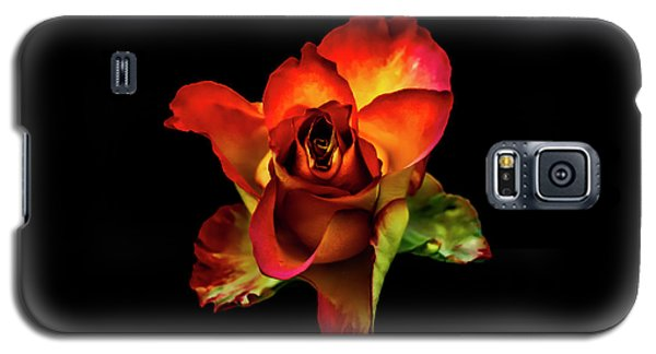 A Red Rose On Black Galaxy S5 Case
