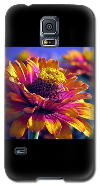 Galaxy S5 Case featuring the photograph A Riot Of Color by Chris Anderson