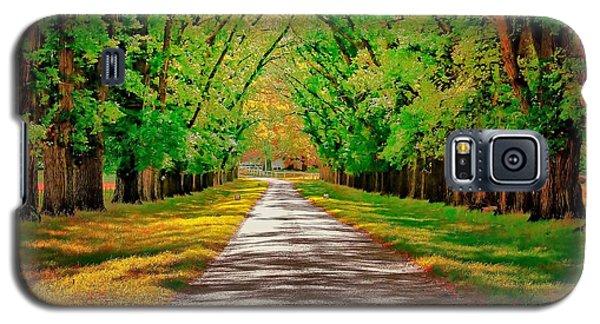 A Road Through Autumn Galaxy S5 Case