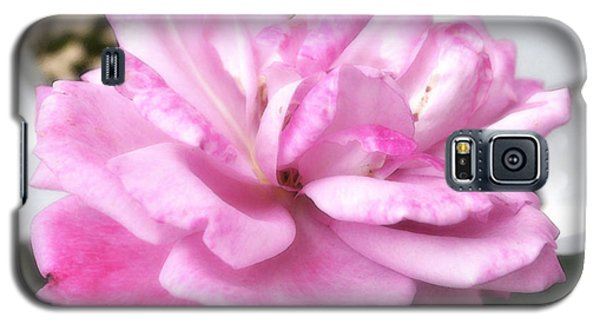A Rose For Cyndee Galaxy S5 Case
