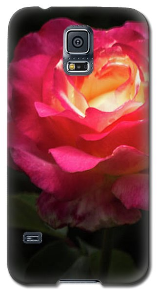 A Rose For Love Galaxy S5 Case
