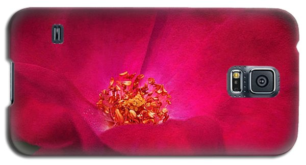 A Rose For My Love Galaxy S5 Case by Kathi Mirto