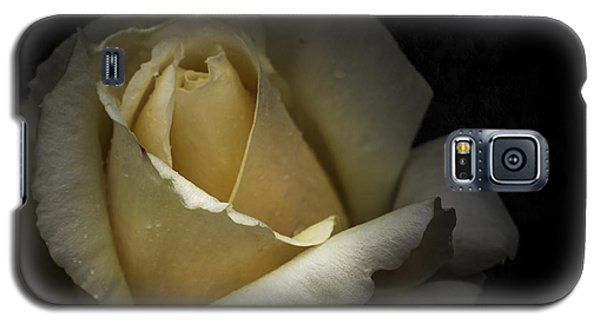 Galaxy S5 Case featuring the photograph A Rose by Ryan Photography