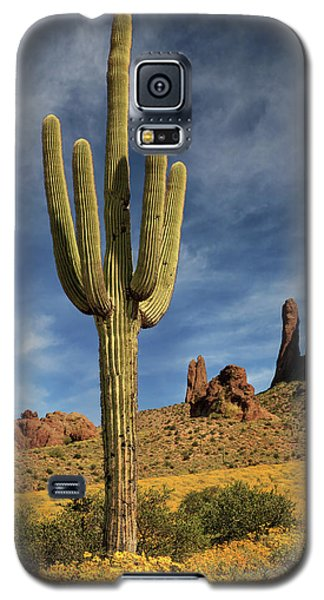 A Saguaro In Spring Galaxy S5 Case by James Eddy