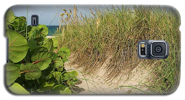 Galaxy S5 Case featuring the photograph A Sea Grape Welcome by Michelle Wiarda