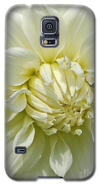 A Secret Visitor Galaxy S5 Case