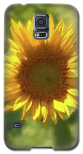 A Single Sunflower Showing It's Beautiful Yellow Color Galaxy S5 Case