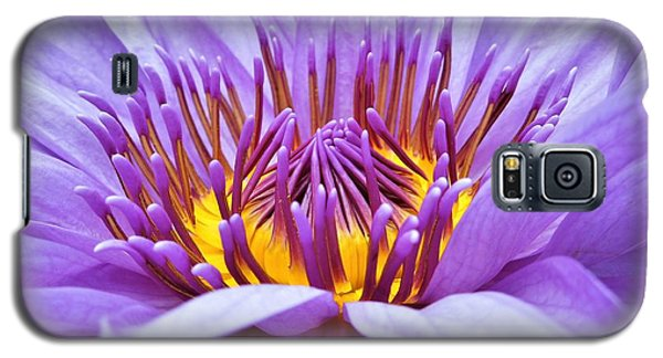 A Sliken Purple Water Lily Galaxy S5 Case