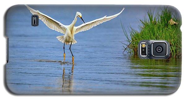 A Snowy Egret Dip-fishing Galaxy S5 Case by Rick Berk