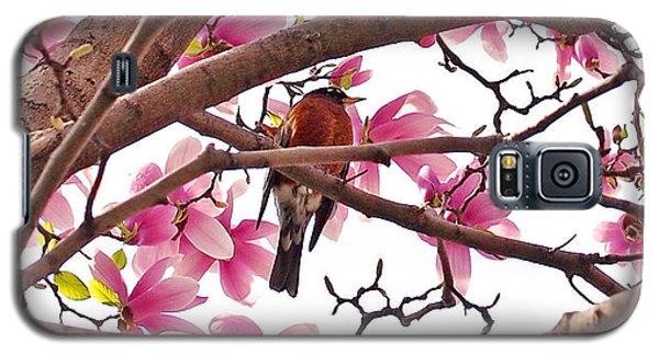 A Songbird In The Magnolia Tree - Square Galaxy S5 Case