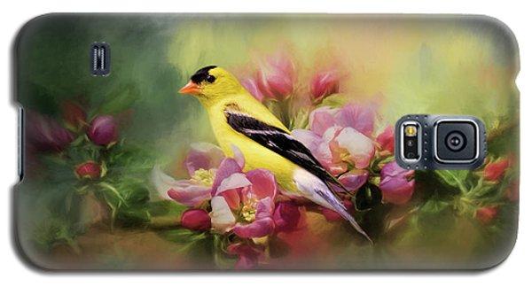 A Splash Of Joy Bird Art Galaxy S5 Case