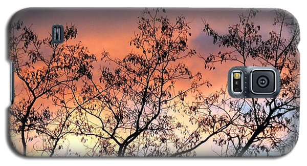 Galaxy S5 Case featuring the photograph A Splendid Silhouette by Will Borden