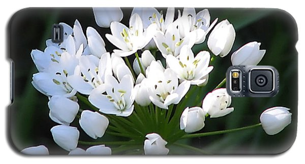 Galaxy S5 Case featuring the photograph A Spray Of Wild Onions by Felipe Adan Lerma