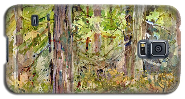 A Stand Of Trees Galaxy S5 Case