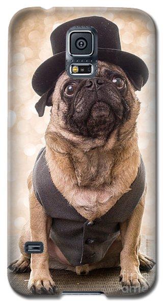 A Star Is Born - Dog Groom Galaxy S5 Case