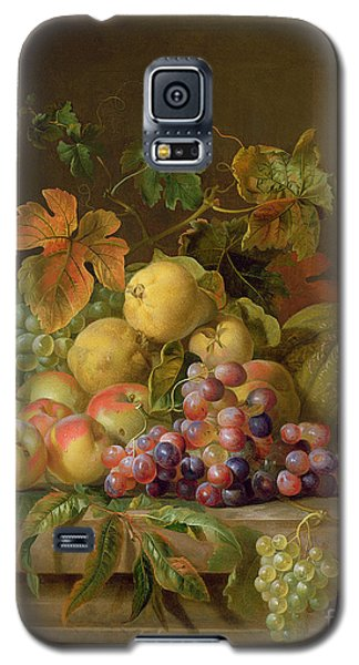 A Still Life Of Melons Grapes And Peaches On A Ledge Galaxy S5 Case