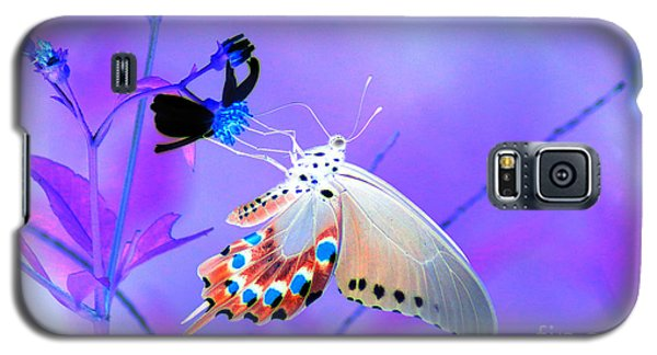 A Strange Butterfly Dream Galaxy S5 Case by Kim Pate