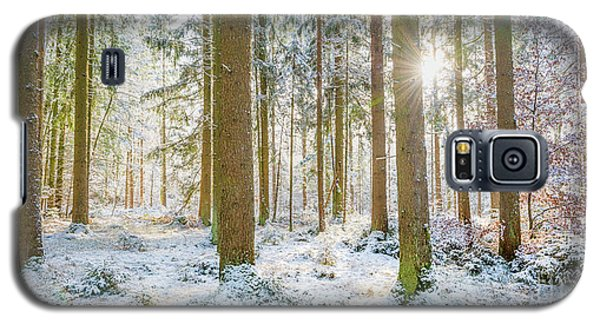 Galaxy S5 Case featuring the photograph A Sunny Day In The Winter Forest by Hannes Cmarits