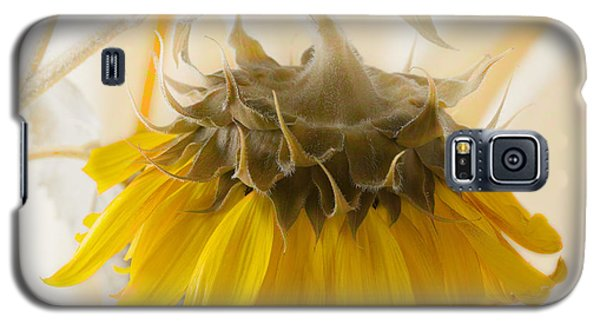 A Suspended Sunflower Galaxy S5 Case