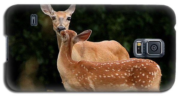A Tender Moment Galaxy S5 Case