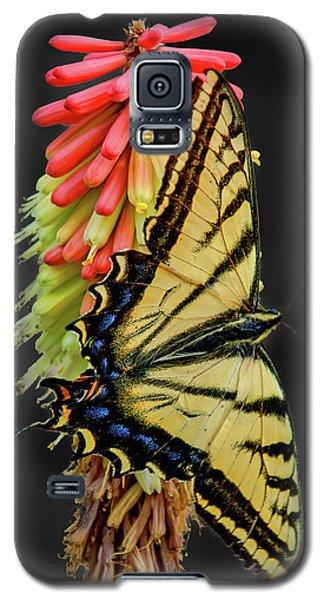 A Tiger On A Poker Galaxy S5 Case