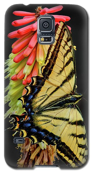 Galaxy S5 Case featuring the photograph A Tiger On A Poker by Britt Runyon