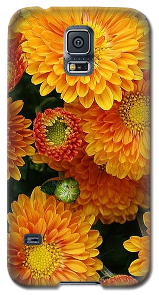 Galaxy S5 Case featuring the photograph A Touch Of Autumn by Bruce Bley