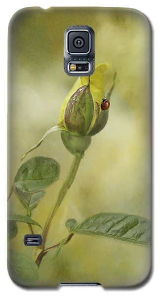 A Touch Of Class Galaxy S5 Case