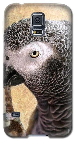 Galaxy S5 Case featuring the photograph A Touch Of Grey 11 by Betty LaRue