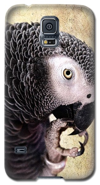 Galaxy S5 Case featuring the photograph A Touch Of Grey by Betty LaRue