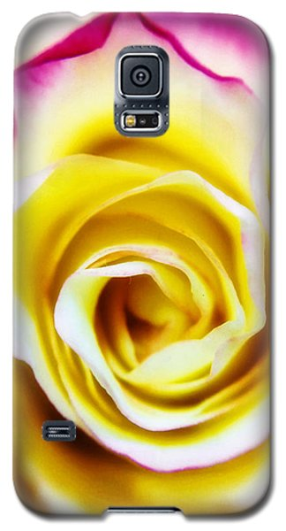 A Touch Of Pink Galaxy S5 Case