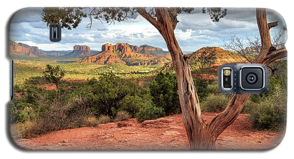 Galaxy S5 Case featuring the photograph A Tree In Sedona by James Eddy