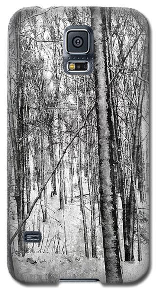 A Tree's View In Winter Galaxy S5 Case
