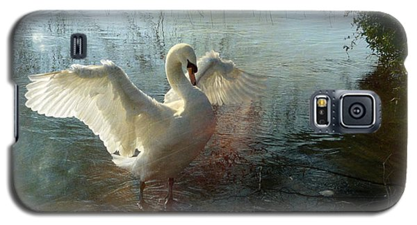 A Very Fine Swan Indeed Galaxy S5 Case by LemonArt Photography