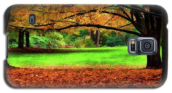 A Walk In The Park Galaxy S5 Case