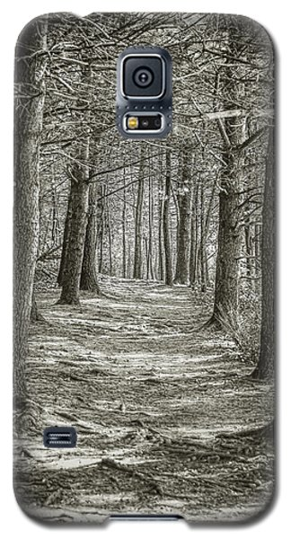 Galaxy S5 Case featuring the photograph A Walk In Walden Woods by Ike Krieger