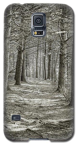 A Walk In Walden Woods Galaxy S5 Case by Ike Krieger