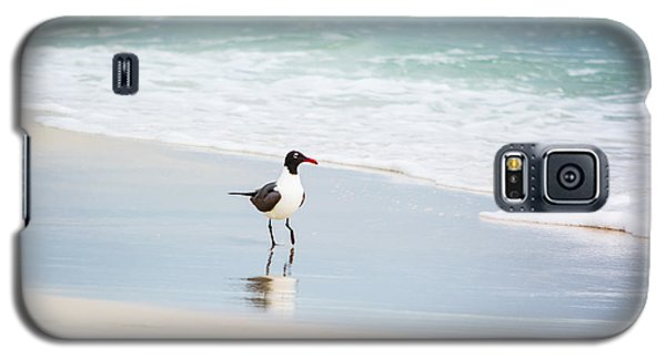 A Walk On The Beach Galaxy S5 Case by Shelby  Young