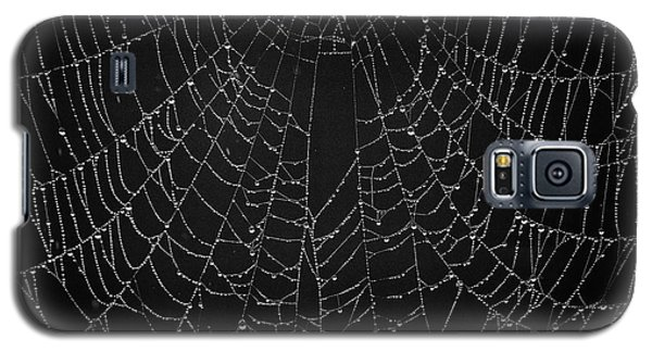 A Web Of Silver Pearls Galaxy S5 Case
