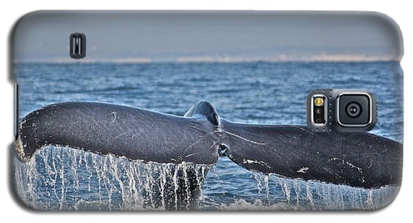 A Whale Of A Tale Galaxy S5 Case