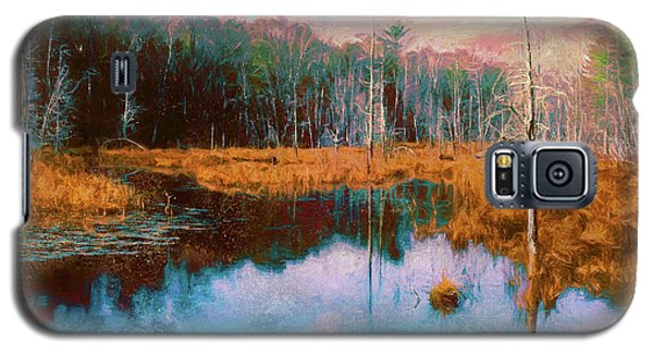 A Wilderness Marsh Galaxy S5 Case