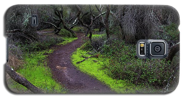 A Windy Path Galaxy S5 Case