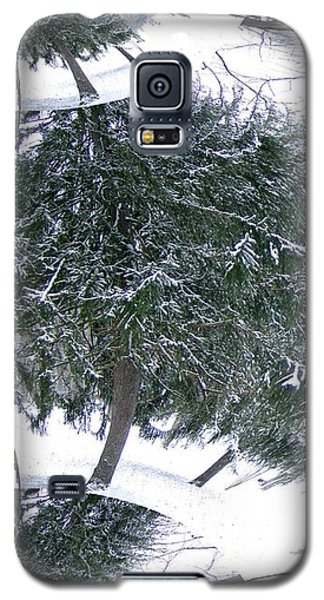Galaxy S5 Case featuring the photograph A Winter Fractal Land by Skyler Tipton