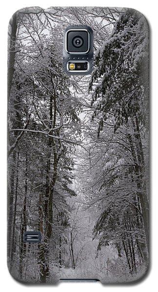 A Winters Path Galaxy S5 Case