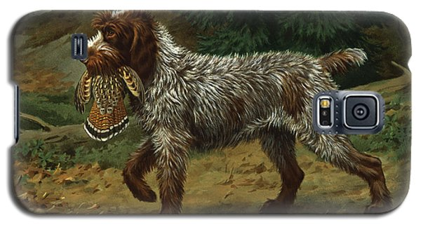 A Wire-haired Pointing Griffon Holds Galaxy S5 Case